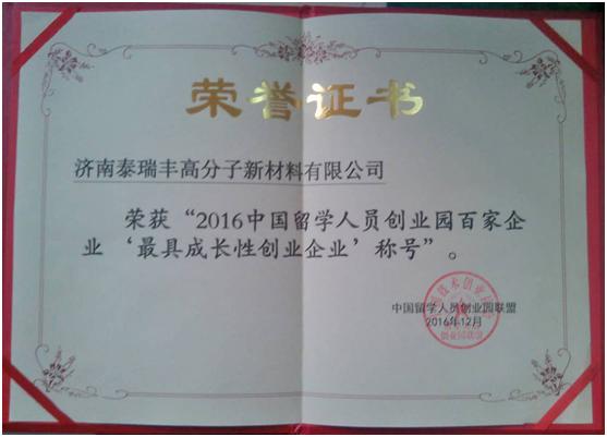 最具成长性创业企业证书